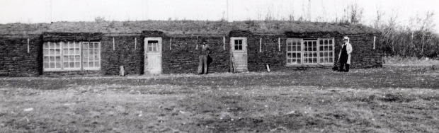 badry-sod-barn-1956.jpg