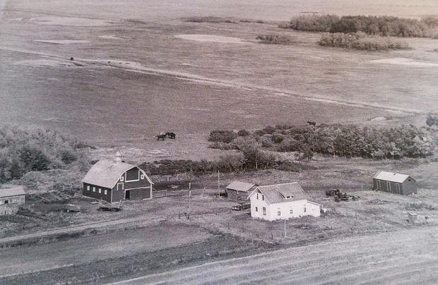 Kroetsch Farmyard 1956