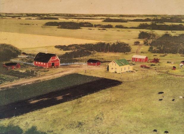 Kroetsch Farmyard 1960
