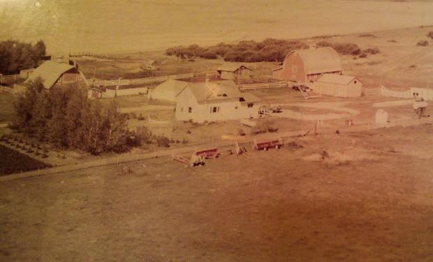 Kroetsch Farmyard 1976