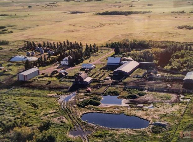 Kroetsch Farmyard 2011