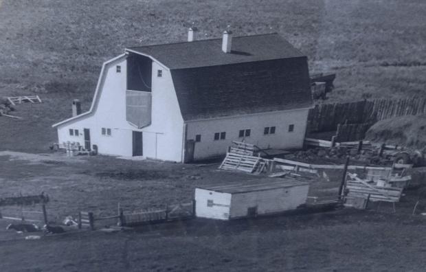 Aerial Photo 1954