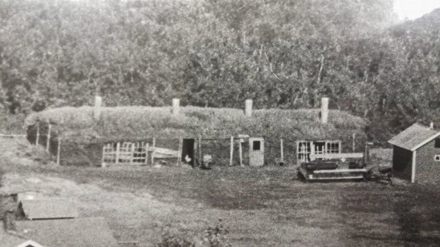 Badry Sod Barn 1