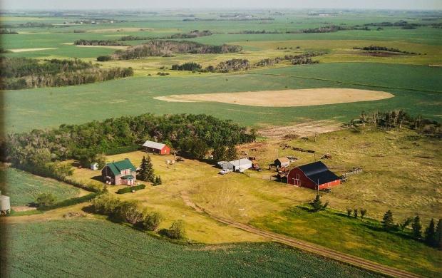 Brausen-Kroetsch Farmyard 2004.jpg