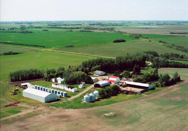 FARM 2003