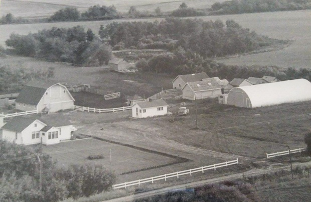 Moser Homestead 1954